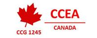 CCEA – best immigration consultants in Delhi